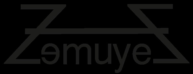 Logo Zemuye